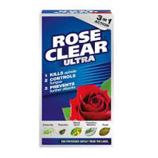 Roseclear Concentrate