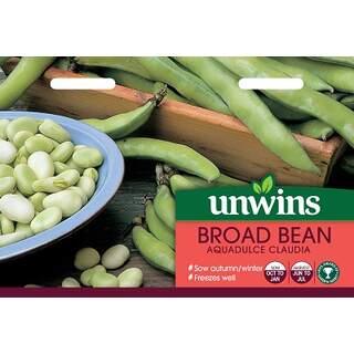 Broad Bean Aquadulce Claudia