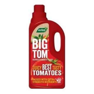 Tomato food Big Tom