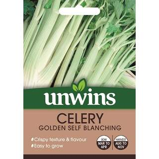 Celery Golden Self blanching
