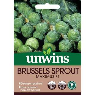 Brussels Sprouts Maximus F1