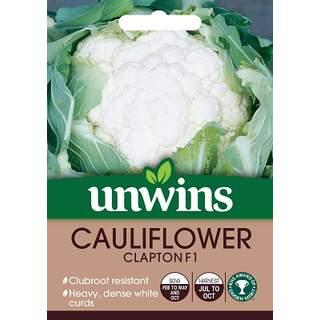 Cauliflower Clapton F1