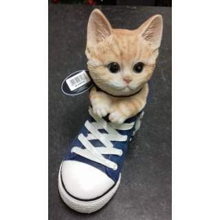 Ginger Kitten Sports Shoe PP