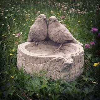 Bird on a Log Feeder