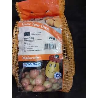 Seed Potato 2kg Record