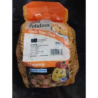 Seed Potato 2kg Cara