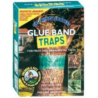 Glue Bands
