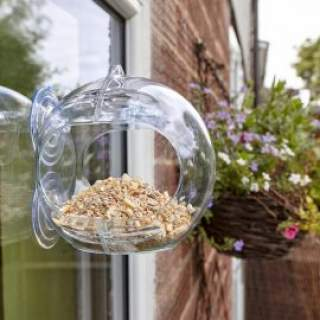 PK Globe Window Feeder