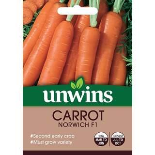 Carrot Norwich F1