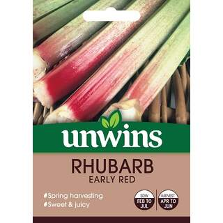 Rhubarb Early Red