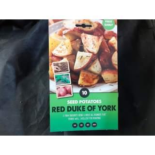 Seed Potato Red Duke Of York
