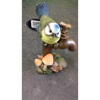 Blue Tit on Garden Tap
