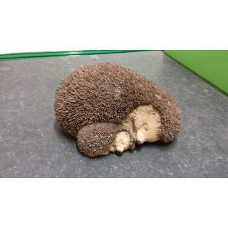 RL Mother Baby Hedgehog