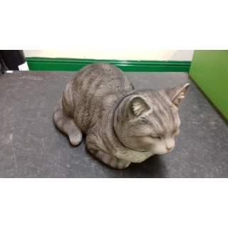 Dreaming Cat B
