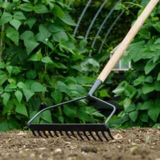 Long H Soil Rake W