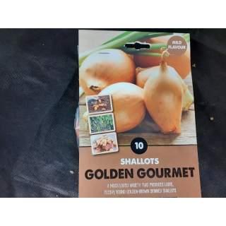 Shallot Golden Gourmet