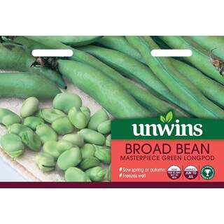 Broad Bean Masterpiece Green