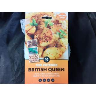 Seed Potato British Qu