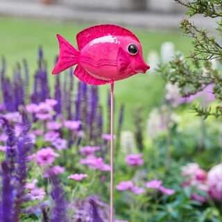 Frivolous Fish