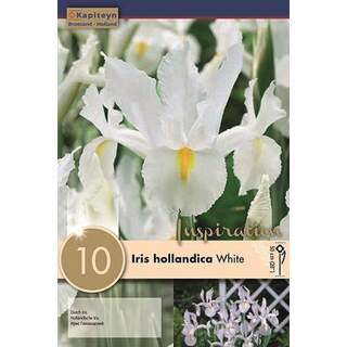 Iris Holl White